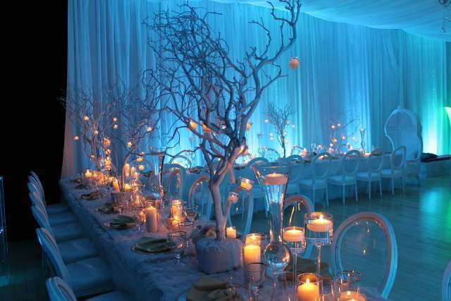 Blue Quinceanera Decorations Ideas 20 How To Organize