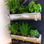 herbs garden indoor