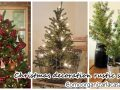 Trend in rustic christmas decoration – pines