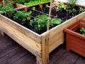 30 ideas for home gardens