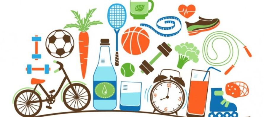 La organizacion como un habito saludable