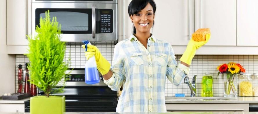 Factores que influyen en la organizacion del hogar
