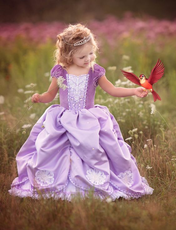 ¿Como vestir a una niña en una fiesta de princesita Sofia?