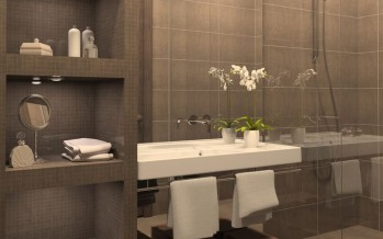 Ideas para Organizar el Baño