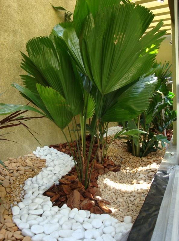 Ideas para jardines interiores 16 decoracion de for Ideas de jardines interiores