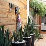 ideas for indoor gardens