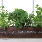 jardin de hiervas para la cocina 19