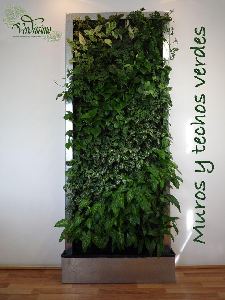 24 opciones para jardines verticales decoracion de for Plantas para muros verdes verticales