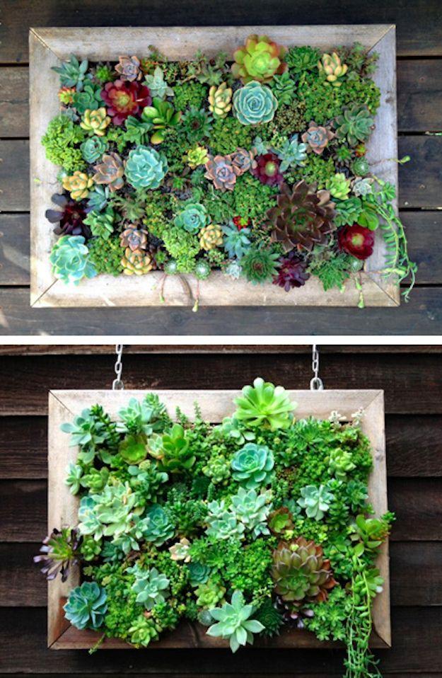 opciones-para-jardines-verticales (15)
