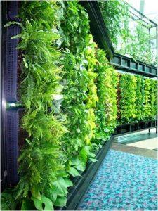 opciones-para-jardines-verticales (18)