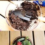 ideas-diy-para-decorar-tu-jardin (5)
