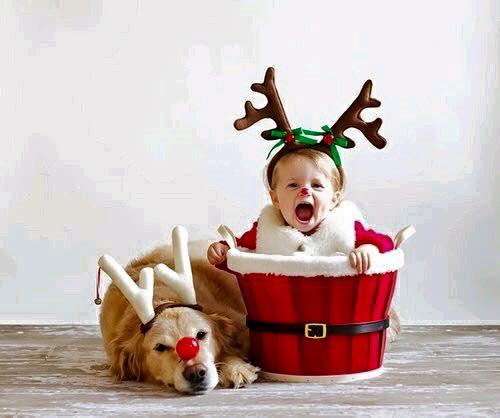 ideas para fotos de bebes navidad fin de ao