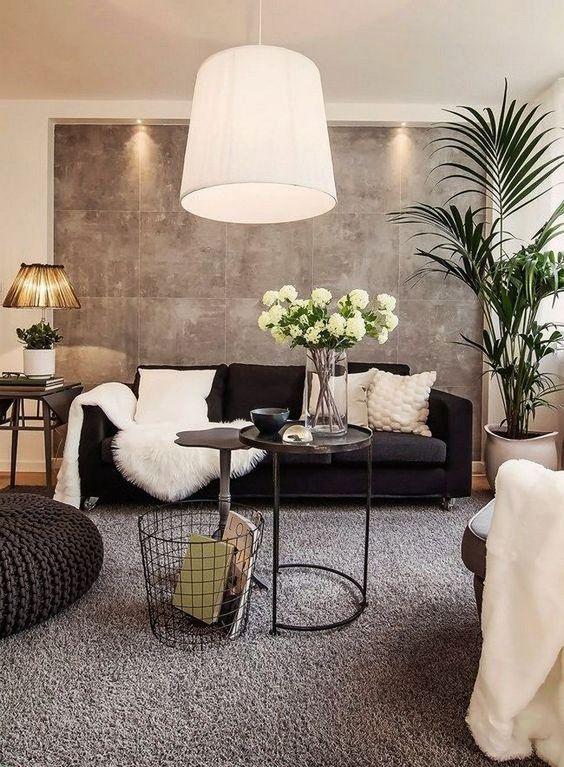 fotos de decoracion de salas (2)