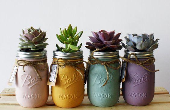 Decoracion con suculentas como organizar la casa for Decoracion con plantas suculentas