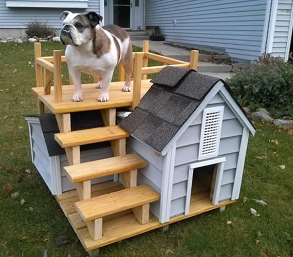 Ideas para hacer casas de perros decoracion de - Escaleras para perros pequenos ...