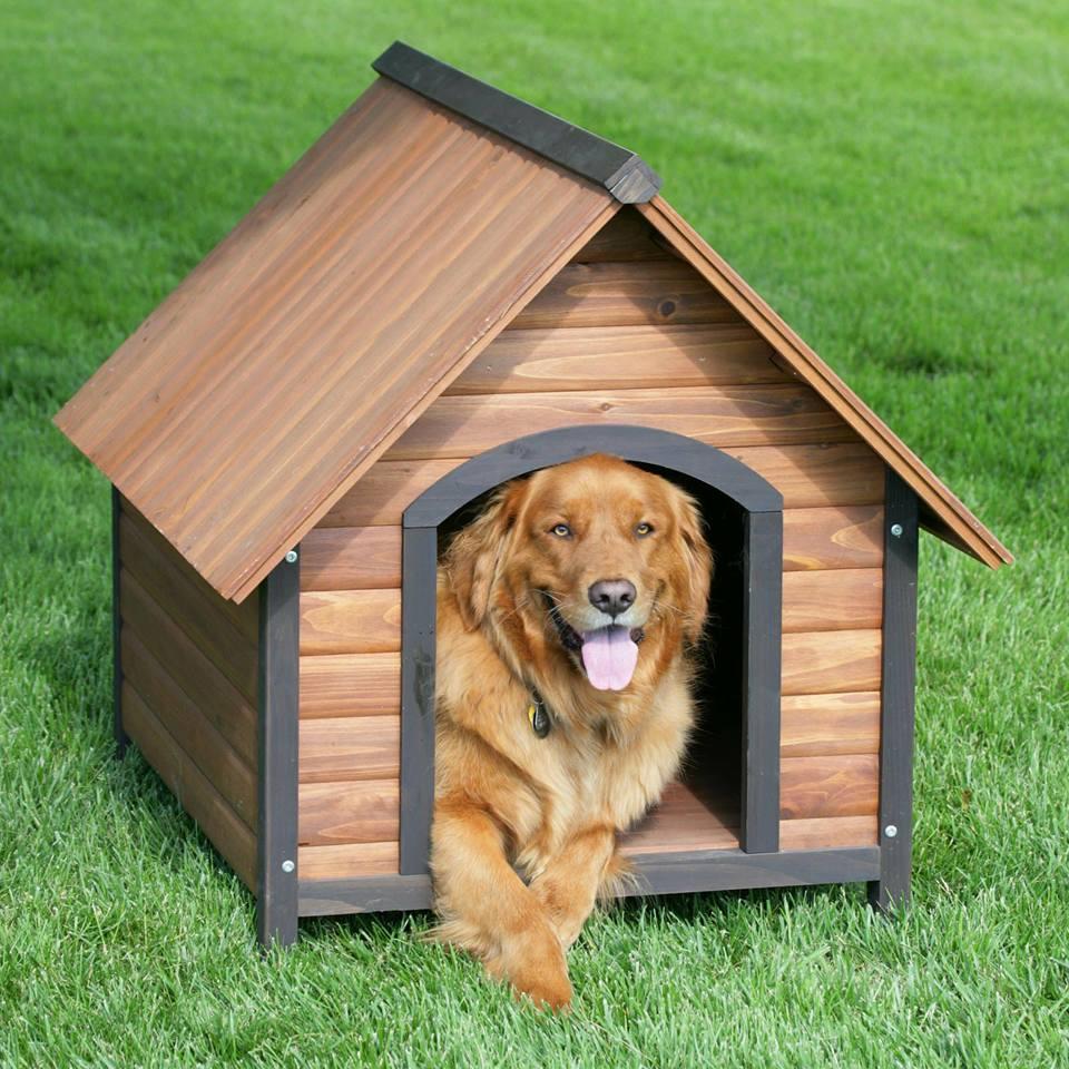 Ideas para hacer casas de perros 19 decoracion de for Casas para perros