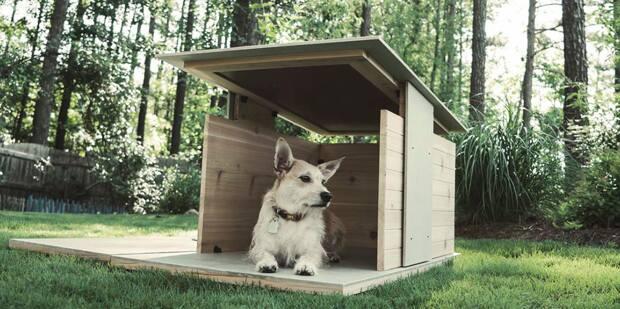 Ideas para hacer casas de perros 2 decoracion de for Construir casa de perro