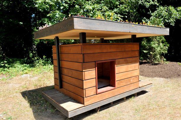 Ideas para hacer casas de perros 4 decoracion de for Casillas para jardin