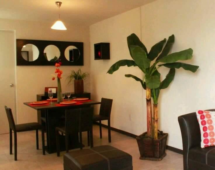 Ideas para decoración y organización de espacios pequeños