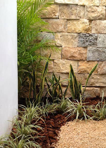 jardines para casas de infonavit (3)