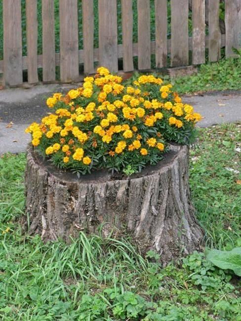 Ideas con troncos para tu jard n 1 decoracion de for Ideas para decorar tu jardin reciclando