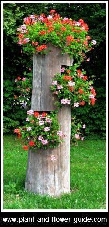 Ideas con troncos para tu jard n decoracion de - Troncos para jardin ...