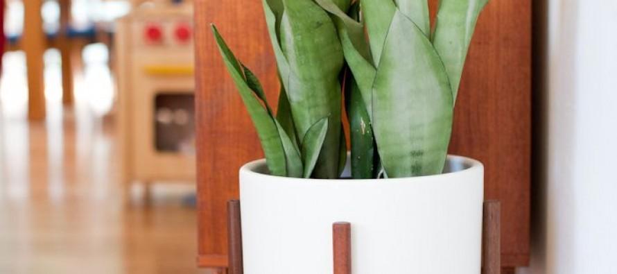 Ideas de decoracion de interiores con acabados en madera for Decoracion de interiores en madera
