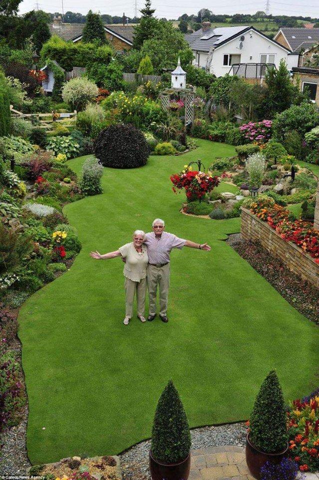 Ideas preciosas para personalizar tu jardín
