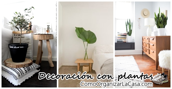Como decorar mi casa decoracion de interiores fachadas for Quiero decorar mi casa