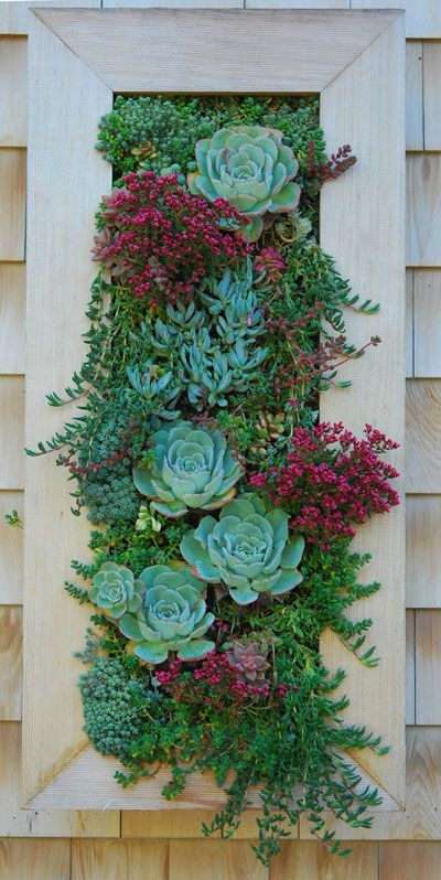 Increibles propuestas de jardines interiores 19 - Jardines increibles ...