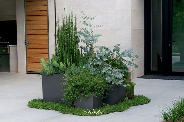 Increibles propuestas de jardines interiores 27 - Jardines increibles ...