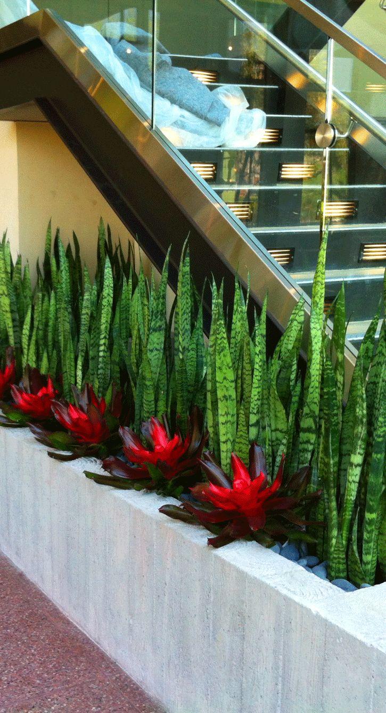 Increibles propuestas de jardines interiores 29 - Jardines increibles ...