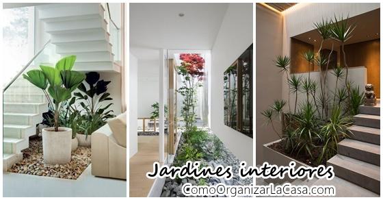 Increibles propuestas de jardines interiores decoracion for Jardines interiores