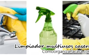 Limpiador simple de uso múltiple DIY