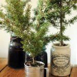 tendencia-en-decoracion-de-navidad-rustica-pinos-9