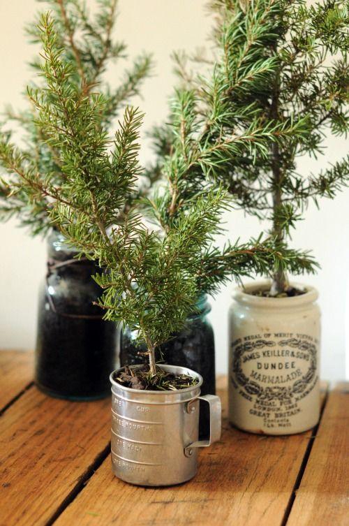 Arboles de navidad rústicos pequeños