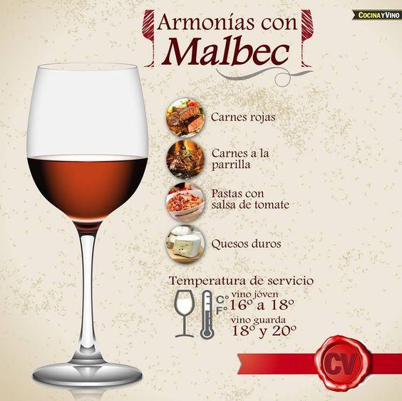 Todo lo que debes saber acerca de los vinos reglas de - Todo sobre decoracion de interiores ...