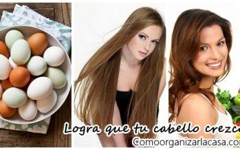 Alimentos que ayudan a que nuestro cabello crezca