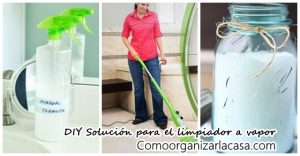 solucion-para-limpiar-a-vapor-diy-para-alfombras