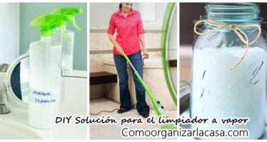 Solución para limpiar a vapor DIY (para alfombras)