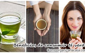 Conoce los beneficios del té verde para tu salud