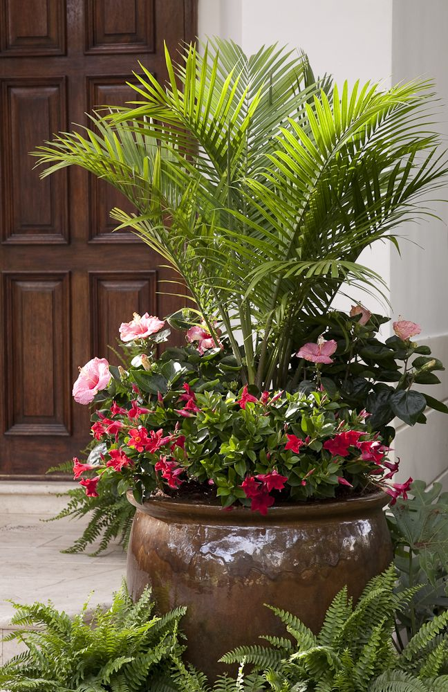 ideas para decorar tu jard n con flores 29 como organizar la casa fachadas decoracion de. Black Bedroom Furniture Sets. Home Design Ideas