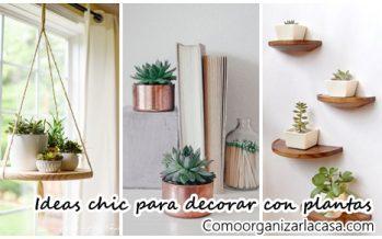 30 Ideas chic para agregar plantas a la decoración de tu habitación
