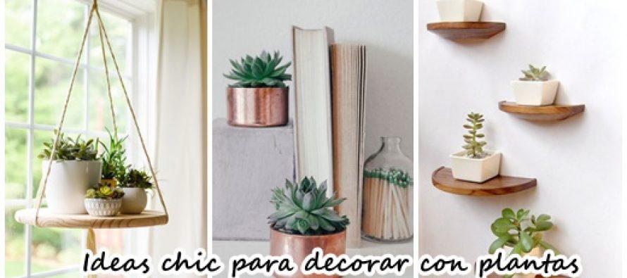 ideas chic para agregar plantas a la decoracin de tu habitacin