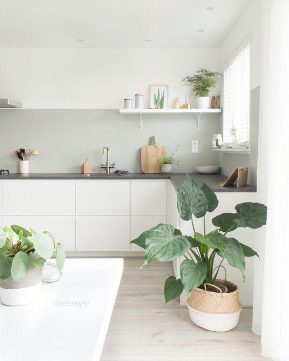 34 ideas plantas pueden decorar cocina 32 decoracion - Ideas para decorar la cocina ...