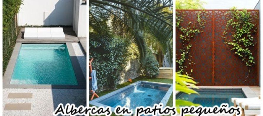 30 dise os de albercas en jardines peque os curso de Disenos de albercas en patios pequenos