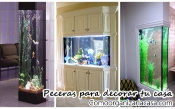 Diseños de peceras para decorar tu casa