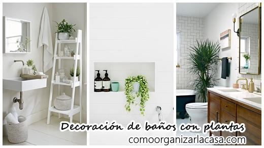30 ideas para decorar tu ba o con plantas decoracion de interiores fachadas para casas como - Plantas en el bano ...