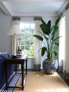 34 Ideas para decorar tu sala con plantas