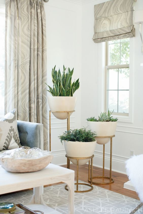 34 Ideas Decorar Sala Plantas 8